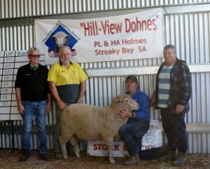Hill View Sale 2017