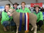 lily-darren-fiona-and-isobella-cameron-koonik-dohnes-nurcoung-vic-exhibited-the-champion-dohne-ewe-at-the-australian-sheep-and-wool-show-by-outcross-media