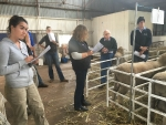 gdc-western-australian-tour-ram-breeders-workshop-at-muresk-institute-wa-3