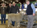 dohne-breeder-andrew-payne-forbes-greg-miller-landmark-forbes-ken-payne-forbes-and-bill-mildren-sheep-classer-by-the-weekly-times