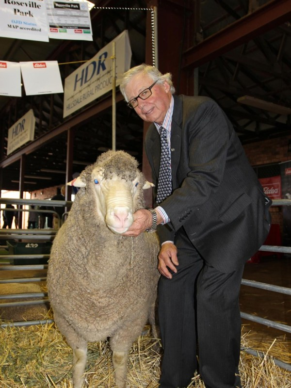 Graham Coddington, Roseville Park Dohne stud, Yeoval, NSW with his top price sale ram, which sold for $20,000