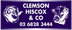 Logo-Clemson-Hiscox-300x128